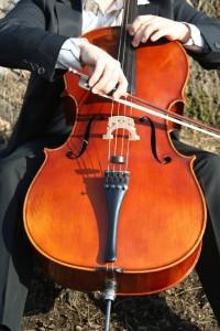 Cello 07 ohne Kopf