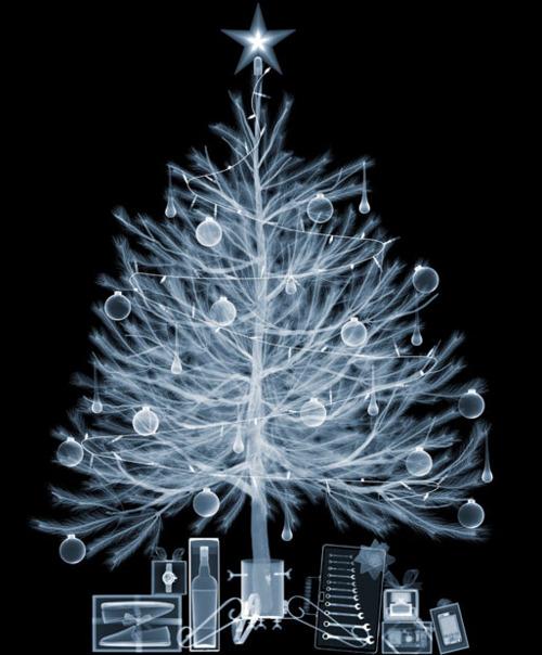 christmas-xray