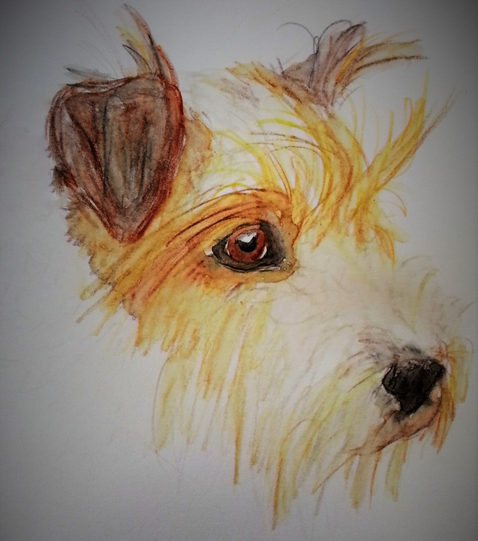 Aquarell Terrier